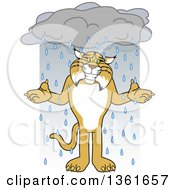 Clipart Of A Bobcat School Mascot Character Shrugging In The Rain Symbolizing Acceptance Royalty Free Vector Illustration