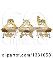 Bobcat School Mascot Characters Sitting At Desks One Raising His Hand Symbolizing Respect