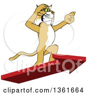 Clipart Of A Bobcat School Mascot Character Standing On An Arrow And Pointing Symbolizing Leadership Royalty Free Vector Illustration by Toons4Biz