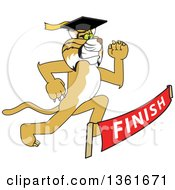 Determined Bobcat School Mascot Character Graduate Running To A Finish Line