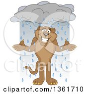Cougar School Mascot Character Shrugging In The Rain Symbolizing Acceptance
