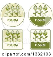 Clipart Of Green Farm Fresh Corn Icons Royalty Free Vector Illustration by Cory Thoman