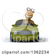 Clipart Of A 3d Bespectacled Camel Driving A Green Convertible Car On A White Background Royalty Free Illustration