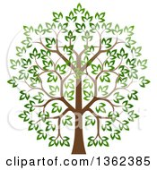 Clipart Of A Lush Tree With A Brown Trunk And Green Leaves Royalty Free Vector Illustration