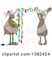 Clipart Of Cartoon Two Festive Moose Hanging Christmas Lights Royalty Free Vector Illustration