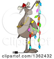 Clipart Of A Cartoon Festive Moose Hanging Christmas Lights Royalty Free Vector Illustration