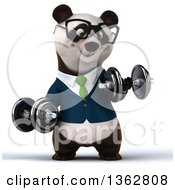 Clipart Of A 3d Bespectacled Business Panda In A Green Tie Working Out Doing Bicep Curls With Dumbbells On A White Background Royalty Free Illustration