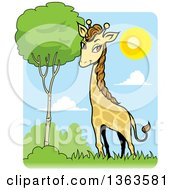 Clipart Of A Cartoon Giraffe By A Tree On A Sunny Day Royalty Free Vector Illustration