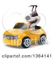 Clipart Of A 3d Jack Russell Terrier Dog Driving A Yellow Convertible Car On A White Background Royalty Free Illustration