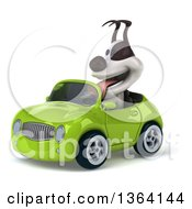 Clipart Of A 3d Jack Russell Terrier Dog Driving A Green Convertible Car On A White Background Royalty Free Illustration
