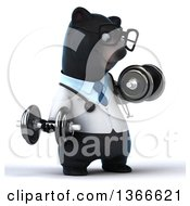 Clipart Of A 3d Bespectacled Black Bear Veterinarian Or Doctor Working Out Doing Bicep Curls With Dumbbells On A White Background Royalty Free Illustration