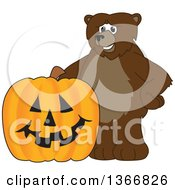 Clipart Of A Grizzly Bear School Mascot Character With A Halloween Jackolantern Pumpkin Royalty Free Vector Illustration
