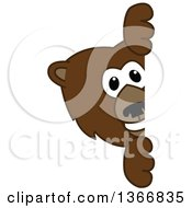 Clipart Of A Grizzly Bear School Mascot Character Looking Around A Sign Royalty Free Vector Illustration by Toons4Biz