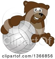 Clipart Of A Grizzly Bear School Mascot Character Grabbing A Volleyball Royalty Free Vector Illustration by Toons4Biz