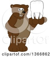 Clipart Of A Grizzly Bear School Mascot Character Holding A Tooth Royalty Free Vector Illustration by Toons4Biz