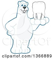 Polar Bear School Mascot Character Holding A Tooth