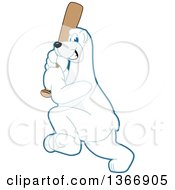 Poster, Art Print Of Polar Bear School Mascot Character Swinging A Baseball Bat