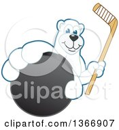Polar Bear School Mascot Character Grabbing A Puck And Holding A Hockey Stick