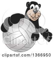 Clipart Of A Black Bear School Mascot Character Grabbing A Volleyball Royalty Free Vector Illustration by Toons4Biz