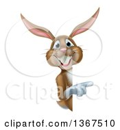 Clipart Of A Happy Brown Easter Bunny Rabbit Pointing Around A Sign Royalty Free Vector Illustration