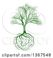 Clipart Of A Green Bare Tree With Brain Roots Royalty Free Vector Illustration