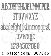 Black And White Sketched Lowercase And Upper Case Alphabet Letters And Numbers
