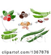 Clipart Of Coffee Berry Coffee Bean Peanut And Beans Royalty Free Vector Illustration