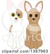 Sitting Fawn And Red And White Chihuahuas