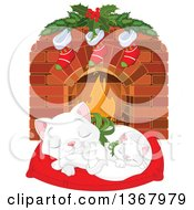 Cute White Kitten And Cat Sleeping On A Pillow In Front Of A Fireplace With Christmas Stockings
