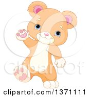 Clipart Of A Cute Baby Bear Cub Walking Upright And Waving Royalty Free Vector Illustration