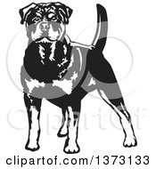 Clipart Of A Black And White Standing Alert Rottweiler Dog Royalty Free Vector Illustration by David Rey