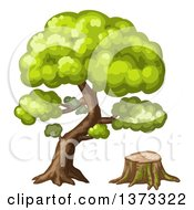 Clipart Of A Mature Tree And Stump Royalty Free Vector Illustration by merlinul