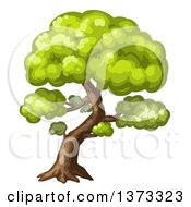 Clipart Of A Mature Tree Royalty Free Vector Illustration by merlinul