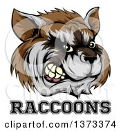 Clipart Of A Snarling Aggressive Raccoon Mascot Head And Text Royalty Free Vector Illustration by AtStockIllustration