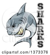 Clipart Of A Vicious Shark Mascot Attacking With Text Royalty Free Vector Illustration by AtStockIllustration