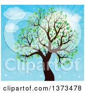Clipart Of A Silhouetted Tree With Green Leaves Against Blue Sky Royalty Free Vector Illustration by visekart