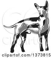 Clipart Of A Black And White Woodcut Xolo Mexican Hairless Dog Royalty Free Vector Illustration