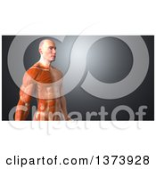 Clipart Of A 3d Half Visible Muscle Man On A Blue Background Royalty Free Illustration