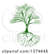 Clipart Of A Green Bare Tree With Brain Roots Royalty Free Vector Illustration by AtStockIllustration