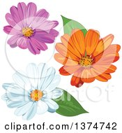 Clipart Of Pink Orange And White Daisy Flowers Royalty Free Vector Illustration