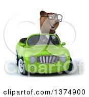 Clipart Of A 3d Bespectacled Brown Business Bear Driving A Green Convertible Car On A White Background Royalty Free Illustration