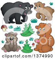 Clipart Of Black And Brown Bears Grasses Mushrooms And Trees Royalty Free Vector Illustration