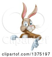 Clipart Of A Happy Brown Bunny Rabbit Pointing Down Over A Sign Royalty Free Vector Illustration