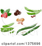 Clipart Of Coffee Beans And Peanuts Royalty Free Vector Illustration