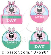 Clipart Of Badges Of A Pink Easter Bunny Royalty Free Vector Illustration