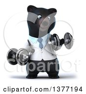 Clipart Of A 3d Black Bear Veterinarian Or Doctor Working Out Doing Bicep Curls With Dumbbells On A White Background Royalty Free Illustration by Julos