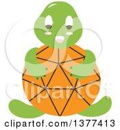 Orange Shelled Turtle Sitting