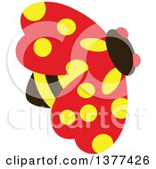 Yellow Spotted Ladybird