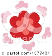 Red And Pink Flower Burst Design