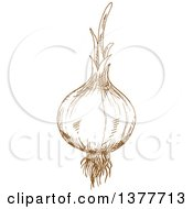 Clipart Of A Brown Sketched Onion Royalty Free Vector Illustration